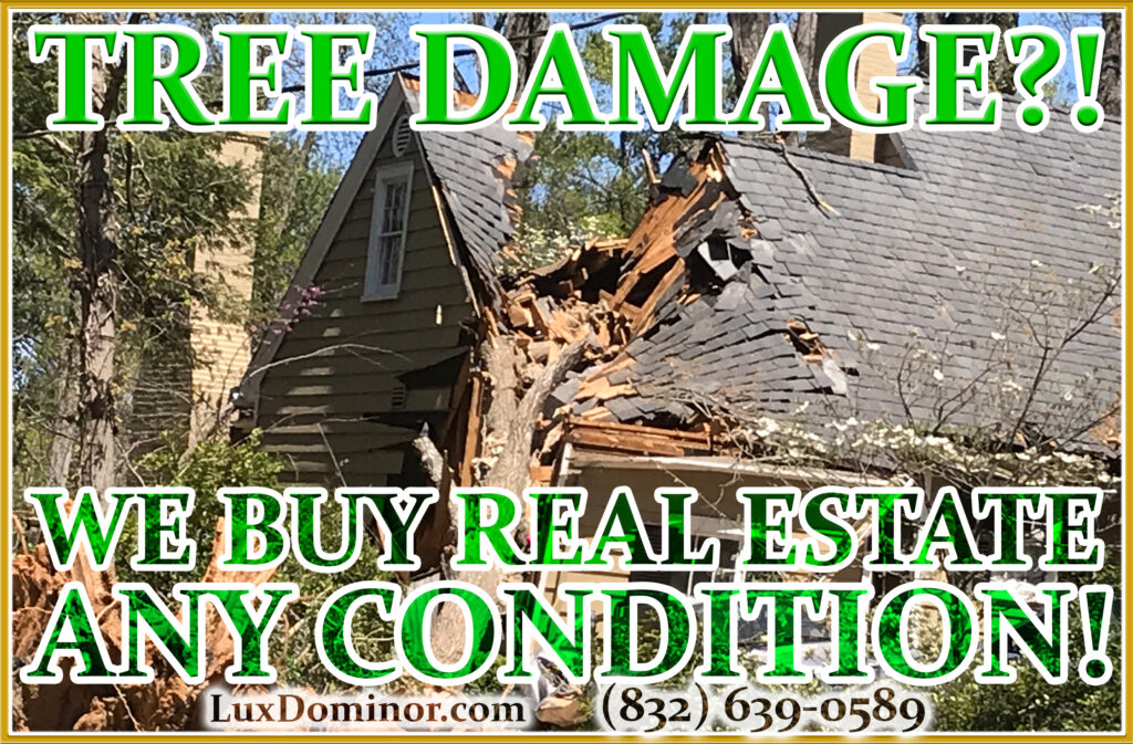 We Buy Real Estate And We Buy Houses In Any Condition-Tree Damage-Roof Damage